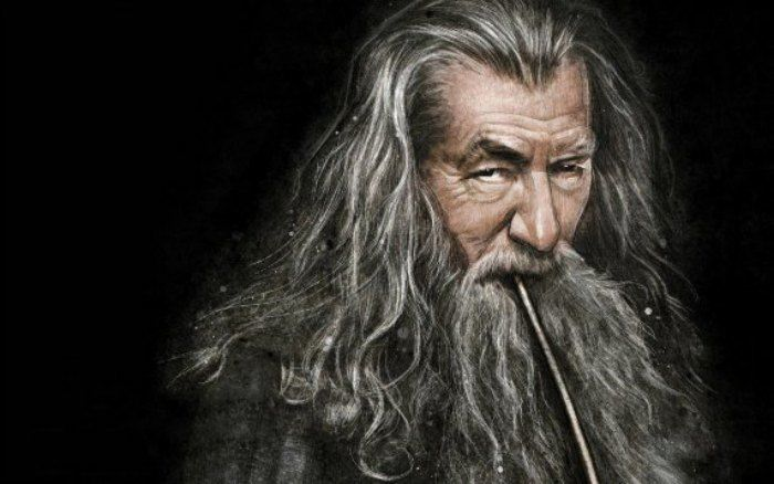 Wizard Gandalf Lord of the Rings