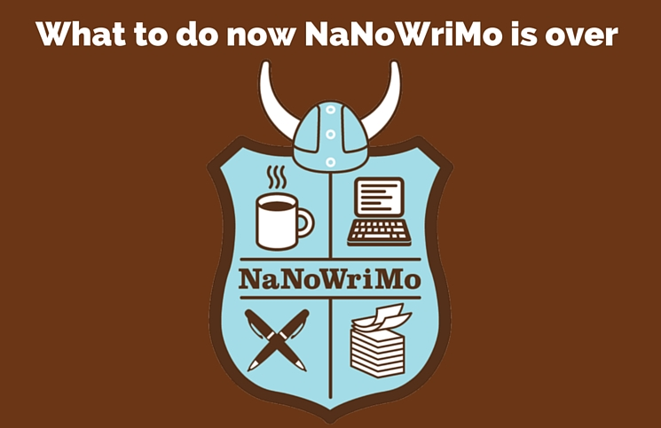 What to do when NaNo is over